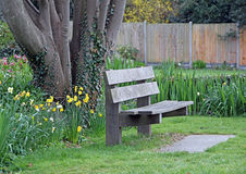 Quiet contemplation bench Royalty Free Stock Images