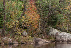 Quiet Cove Lake. Early autumn. yellowing trees Stock Photo