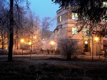 Evening, park Stock Images
