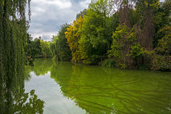 A quiet evening on the water in Uman Stock Photos