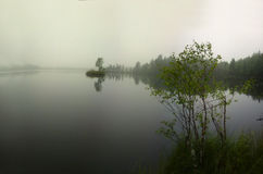 Quiet foggy day in spring forest above river. View of misty river and forest Stock Photo