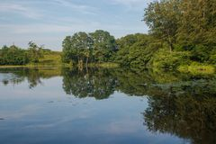 Quiet forest lake with reflection in the water. Beautiful quiet forest surrounded by green trees with mirroring in the water and blue sky royalty free stock photos
