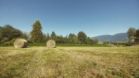 Meadow with hay bales. Stock Photos