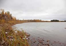 Quiet lake in autumn. A still pond or lake at Elk Island Park in Alberta stock photos