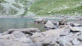 Quiet lake stock footage