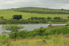Quiet lake in South Africa Royalty Free Stock Images