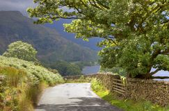 Quiet lane, Cumbria Royalty Free Stock Photography
