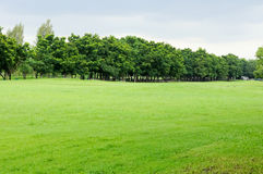 Quiet lawn Stock Images