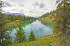 Quiet Mountain Pond in the Wilderness Stock Images