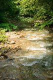 Quiet mountain river in summer Stock Photography