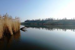 Quiet o lago Imagem de Stock Royalty Free