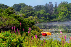 Quiet Ocean Pool in Maine Stock Photography