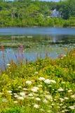 Quiet Ocean Pool in Maine Stock Images