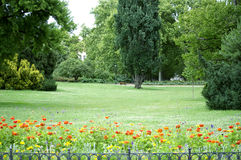 Quiet park in Prague. Quiet Prague park with old trees and green lawns Stock Photography