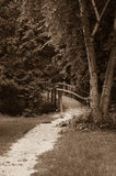 Quiet Path. A gravel path leading to a small foot bridge takes the viewer deeper into a forest Stock Image