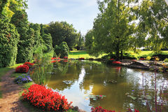Quiet picturesque pond Royalty Free Stock Photography