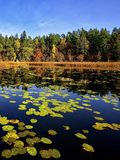 Quiet place in the nature in a european northern country Stock Photography