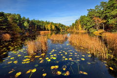 Quiet place in the nature in a european northern country, Royalty Free Stock Photography
