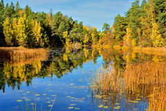 Quiet place in the nature in a european northern country, Stock Photo