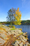 Quiet place in the nature in a european northern country, Sweden, Bagarmosen Royalty Free Stock Photo