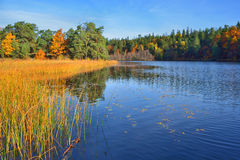 Quiet place in the nature in a european northern country, Sweden, Bagarmosen Stock Photography