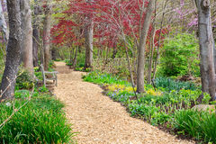 Quiet Place Park Setting Springtime Garden Path Stock Images