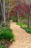 Quiet Place Park Setting Springtime Vertical Garden Path Royalty Free Stock Image