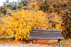 A quiet place to relax in a park Stock Photo