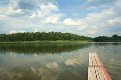Quiet pond with mole Royalty Free Stock Photo