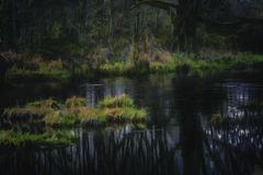Quiet Pond photo manipulation Nisquali Wildlife Preserve. Digitally altered image producing a fantasy surreal effect. Digital impressionism, photo-manipulation Stock Photo