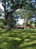 Quiet red roof hut under big tree on green lawn Royalty Free Stock Images