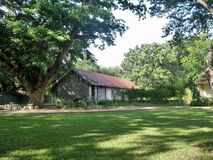 Quiet red roof hut under big tree on green lawn Stock Images