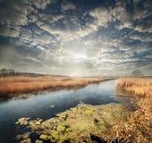 Quiet reedy river Stock Image