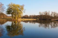 Quiet Rheinauen Lake Royalty Free Stock Photo