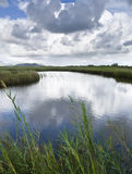 Quiet River. Tranquil river flowing between reeds, with the cloudy sky reflected on the water Stock Photography
