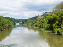Quiet river stream and banks with woods. Panoramic of tranquil river current and banks with forests in day of clouds Royalty Free Stock Photo