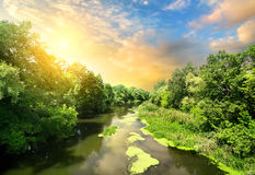 Quiet river at sunset Royalty Free Stock Photo