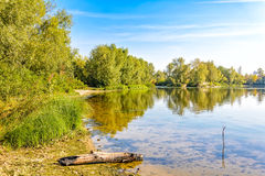 Quiet River with Trees Stock Image