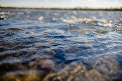 Flow of water close up. Quiet river water in the evening light background,flow of water close up royalty free stock photography