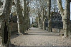A quiet road in Copenhagen, Denmark Stock Photography