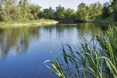 Quiet Ros river at summer Stock Photography