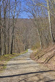 Quiet Rural Road an a Mountain Wilderness Royalty Free Stock Images