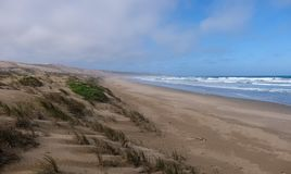 Quiet sandy beach and grassy dunes on the Oystercatcher Trail, near Mossel Bay, Garden Route, South Africa. Quiet sandy beach and grassy dunes with ocean in royalty free stock images