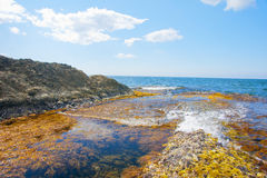 The quiet sea Royalty Free Stock Images