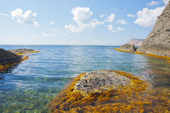 The quiet sea Royalty Free Stock Photo