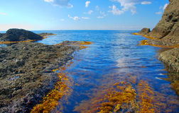 The quiet sea Royalty Free Stock Photography