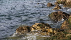 Quiet sea on rock shore Stock Image