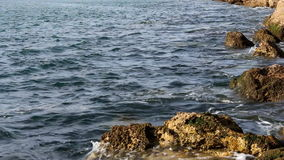 Quiet sea on rock shore Royalty Free Stock Photography