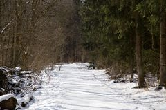 A quiet, snowy path on a sunny day Stock Photo