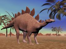 Quiet stegosaurus Royalty Free Stock Images